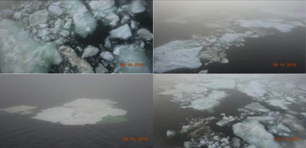 Figure 6: Photographs of sea ice taken from a Weathernews support vessel that traveled through the Laptev Sea in the Arctic on September 16th